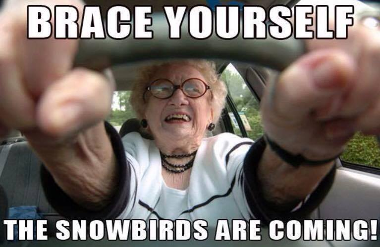Palm Springs Snowbird Meme 1