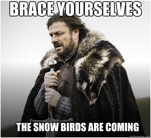 Palm Springs Snowbird Meme 2