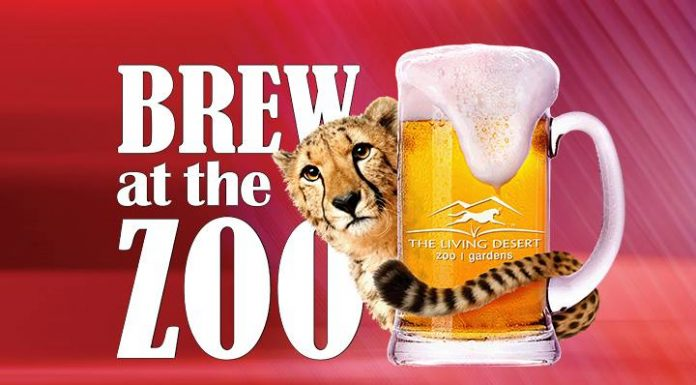 Brew at the Zoo Living Desert