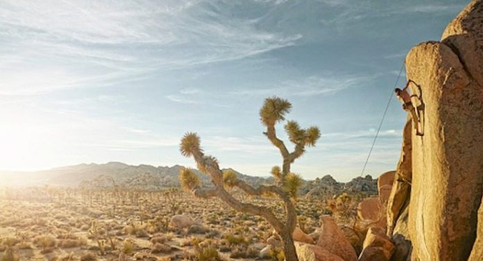 a climber scales a rock in Joshua Tree National Park