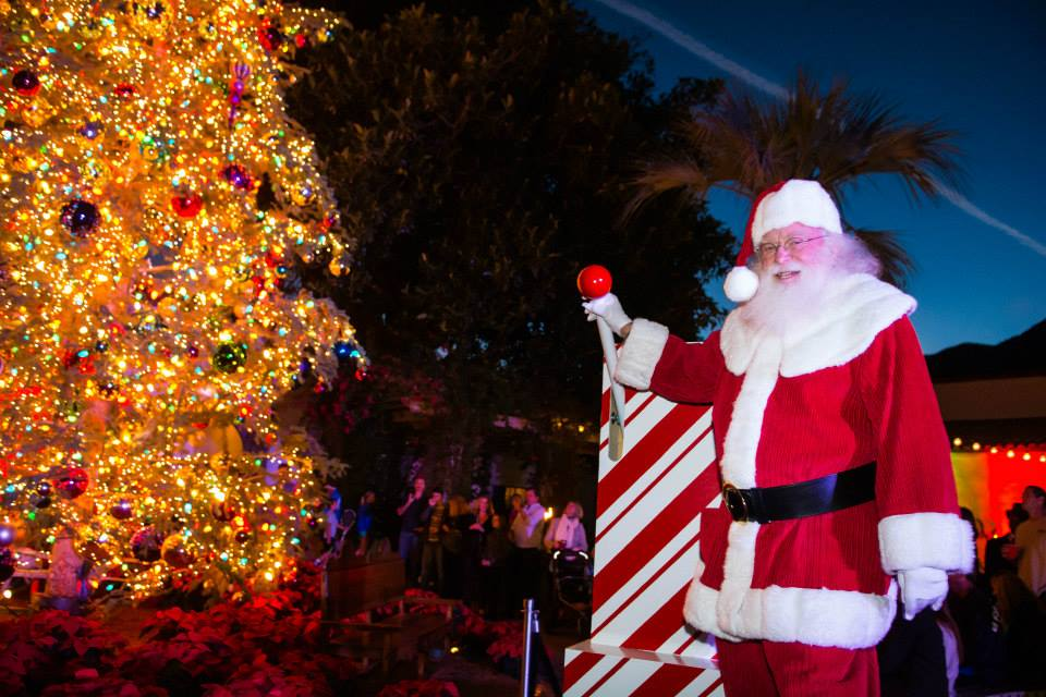 Your Complete Guide To Holiday Light Displays And