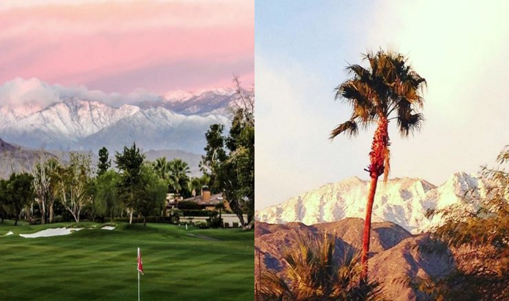 Palm Springs after the snow