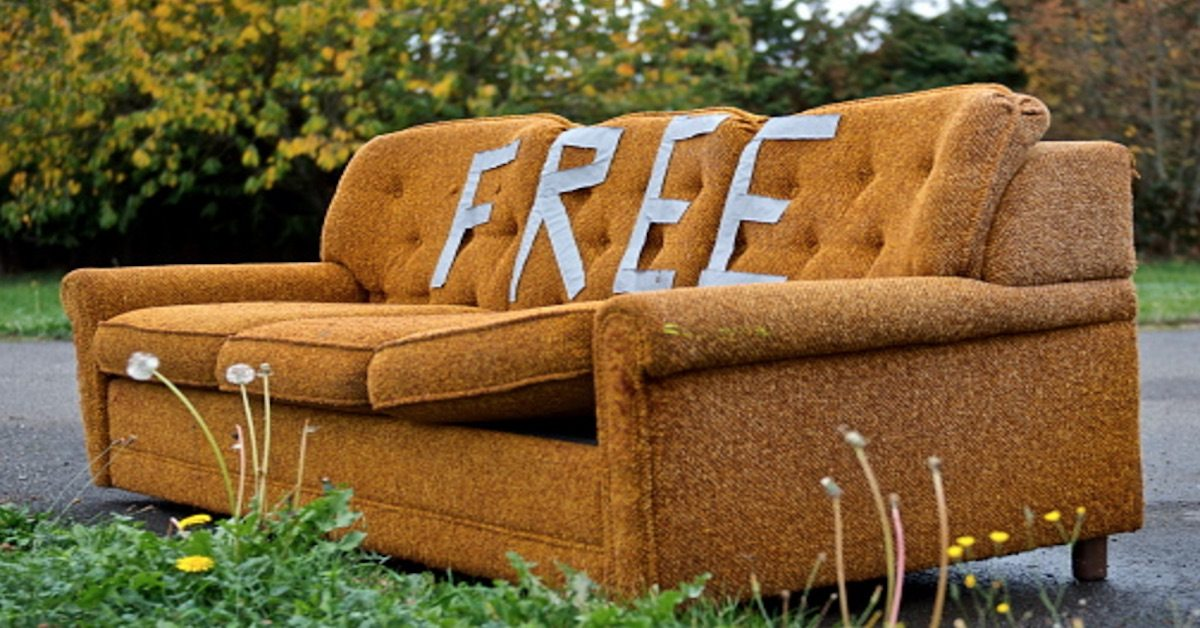 The Couch Is Free And So Are All Mites Living In It