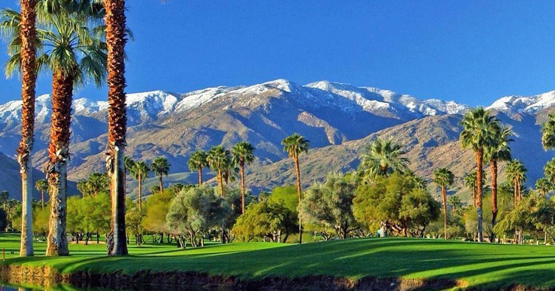 Photos The Coachella Valley Looks Amazing Today Cactus Hugs