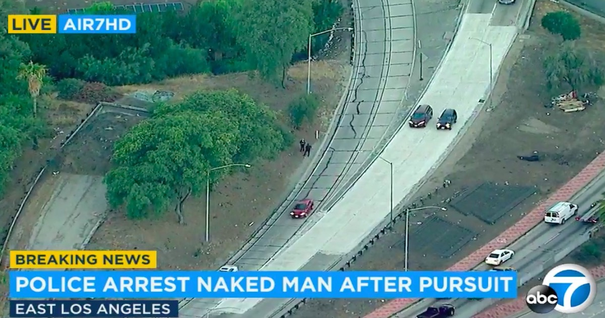 Video: Naked man leads police on foot chase in Los Angeles | Cactus Hugs