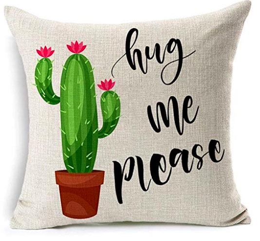 Cactus Hugs Pillow available from Amazon