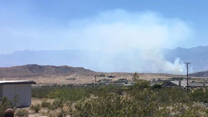 Tamarisk tree fire breaks out near 10 Freeway in Cathedral City